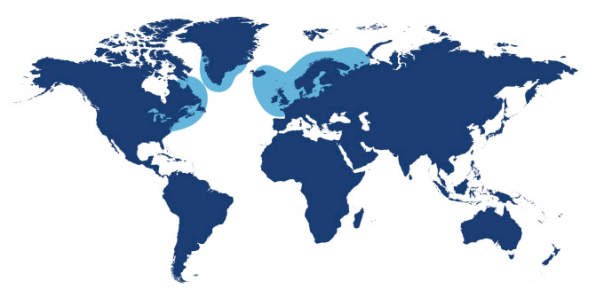 World map showing waters where Atlantic Salmon is found.