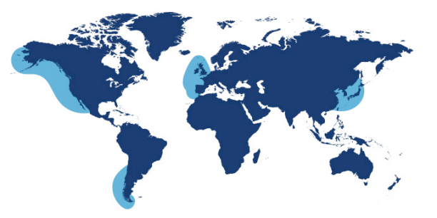 World map showing waters where Mussel is found.