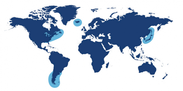 World map showing waters where Queen Scallop is found.